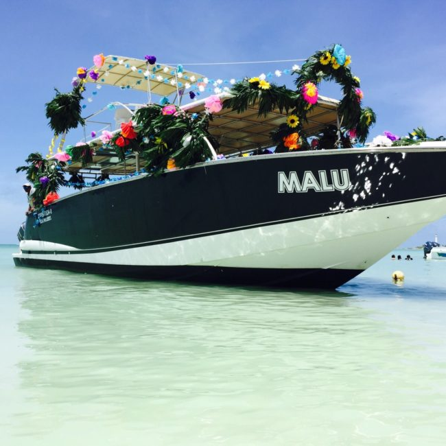 De regreso a Marina Marazul