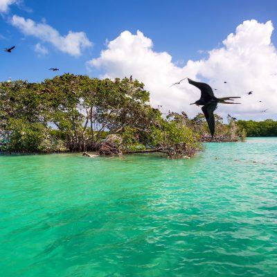 Sian Ka'An & TulumExcursion  compartir con los mayas
