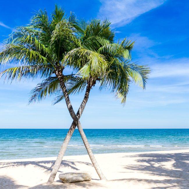 Excursion combiné de l'ile Contoy et «Isla Mujeres»